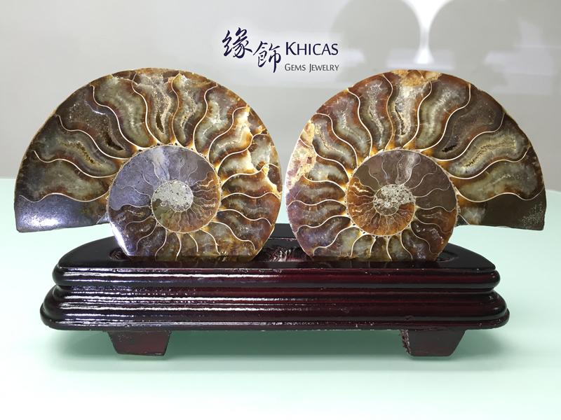 斑彩螺化石水晶連木座 DEC1410003 Khicas Gems 緣飾天然水晶